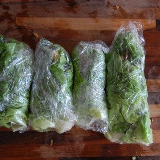 chicken and sausage lettuce wraps- so portable!